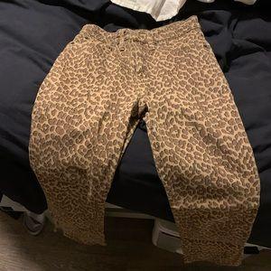 Lucky Brand Hi Rise Brigette Cheetah Flare Crop